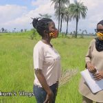 Buying affordable land in The Gambia // Sifoe // First Real Estate