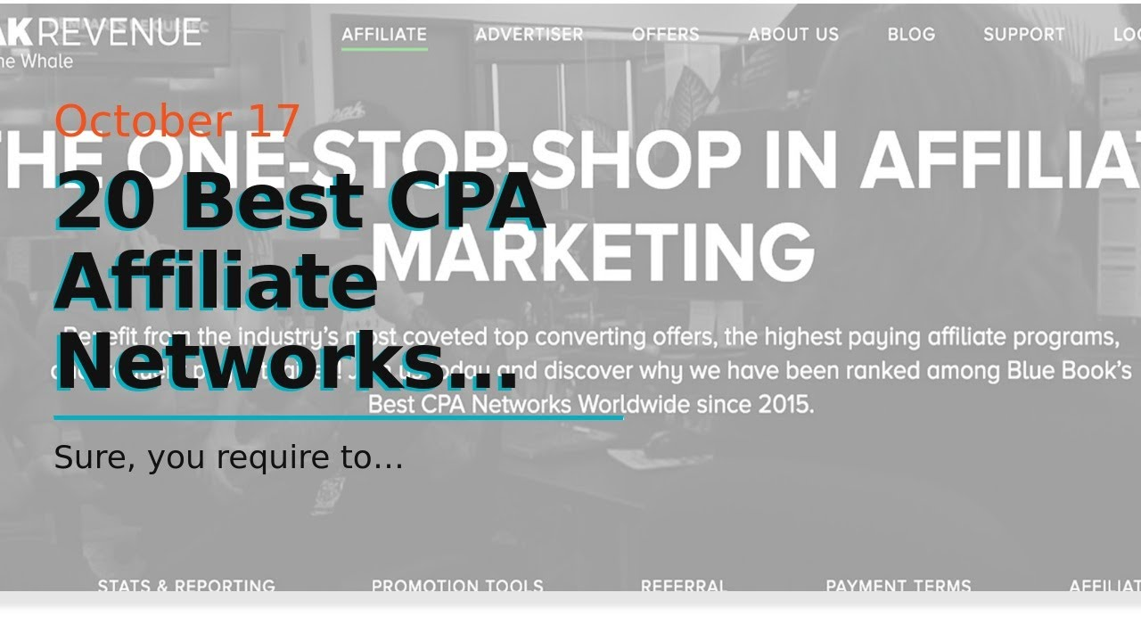 20 Best CPA Affiliate Networks (Top CPA Network) EarningGuys for Beginners