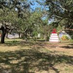 Walk the Lot: High Traffic Corner Lot Vacant Land Investing tour: Trees, Utilities, Location, profit