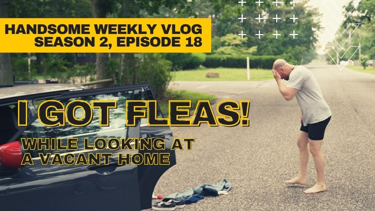 I GOT FLEAS!.... While Looking at a Vacant Home // Handsome Weekly Vlog Season 2, Ep. 18